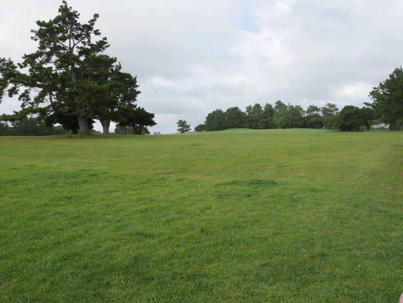 潮岬の芝生